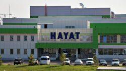 Фабрика Hayat, Елабуга